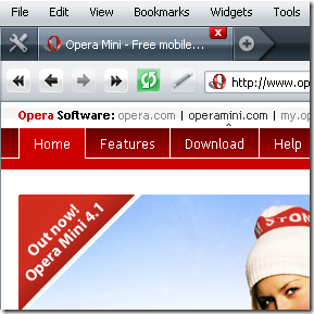 opera-browser-face-skin-theme