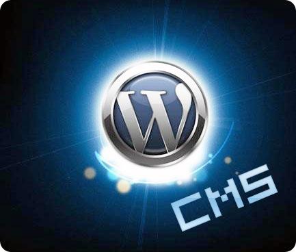 wordpress-logo-shine copy-cms