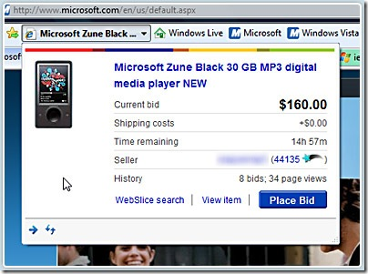 ebay-microsoft-ie90