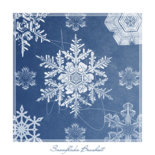 snowflake_brushes_by_meldir