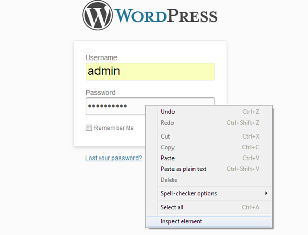 Asterisk Password - WordPress Admin Password